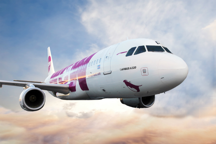 Wow Air Puts Boston Strategies On Hold Latest Flights And Travel News